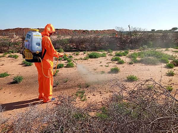 圖二索馬利亞。世界展望會在索馬利亞進行蝗蟲監控、農藥噴灑等各項計畫-1(台灣世界展望會提供)