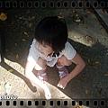 20100926-DSC_7928.JPG