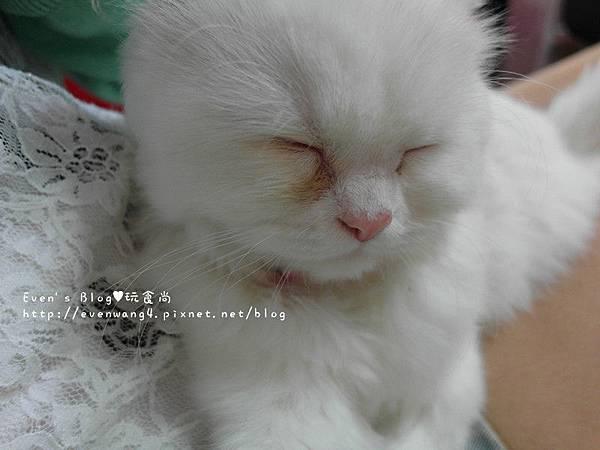 SAM_6289_副本