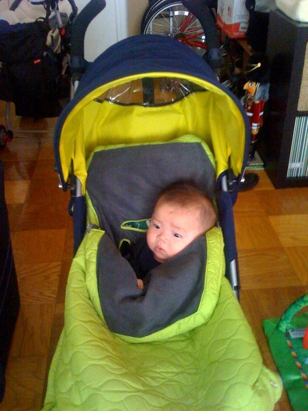 Nathan on stroller
