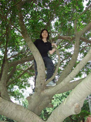 還在拍,人家第一次在博愛爬樹嘛
