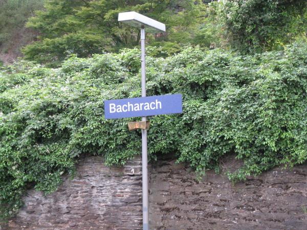 Bacharach到了
