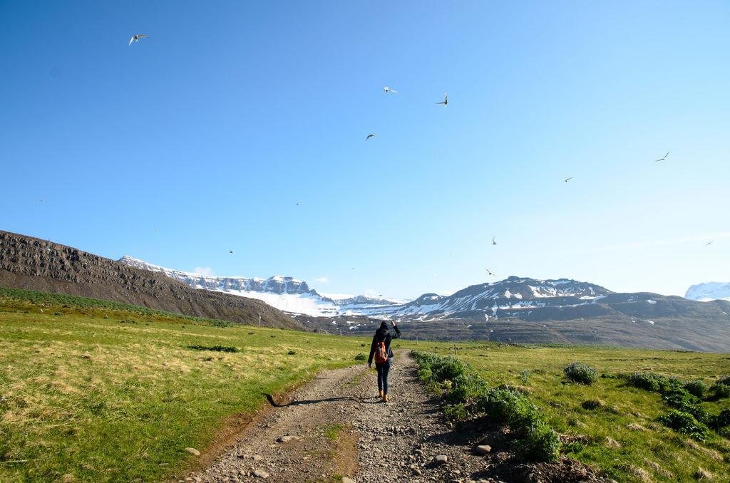 Seyðisfjörður-16