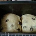 吐司麵包2-葡萄乾土司