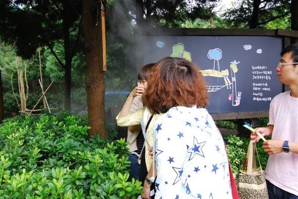 DAY 1 新竹。薰衣草森林