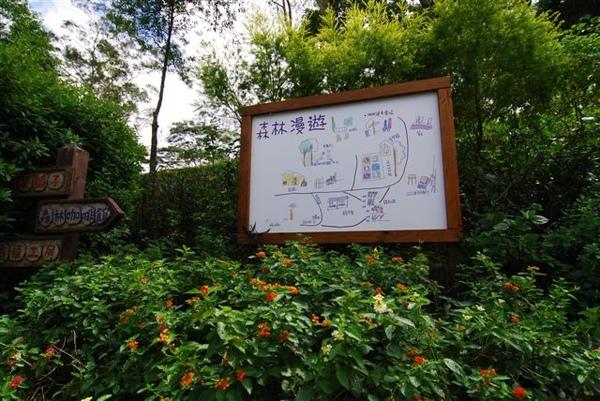薰衣草森林園內地圖
