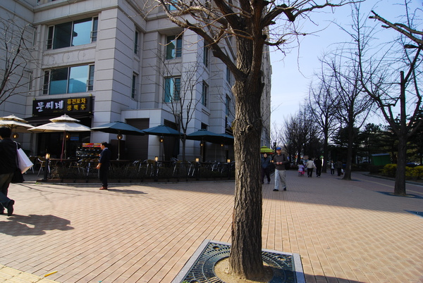KBS旁的咖啡街
