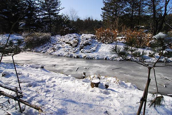湖都結冰啦~