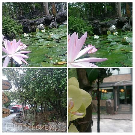 PhotoGrid_1414552684817.jpg