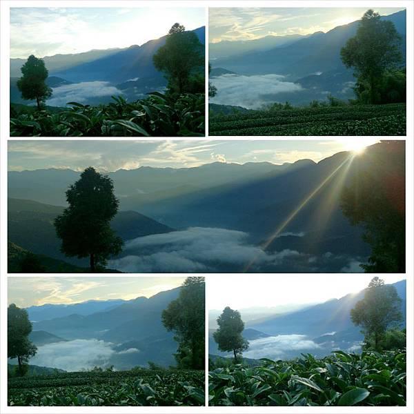 PhotoGrid_1414651248614.jpg