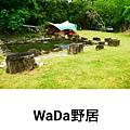 PhotoGrid_1534245717094.jpg