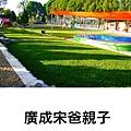 PhotoGrid_1534240526154.jpg