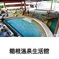 PhotoGrid_1550666071455.jpg