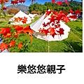 PhotoGrid_Plus_1616417139464.jpg
