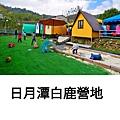 PhotoGrid_Plus_1616417189048.jpg