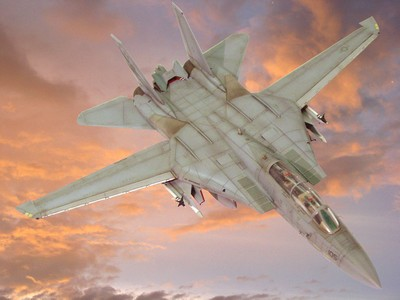 F-14 雄貓式戰鬥機 Tomcat