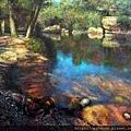 4. Jose Vicente  Barrachina Raices eternas 油畫146x114cm.JPG