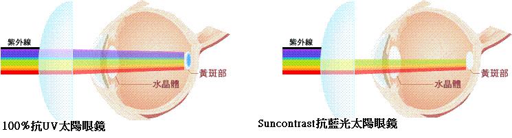 太陽眼鏡比較圖