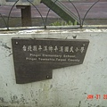 平溪國小~近拍