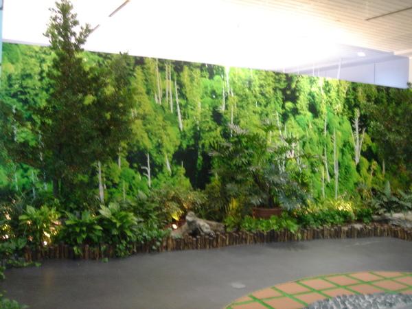 第二航廈的什麼森林紓壓區