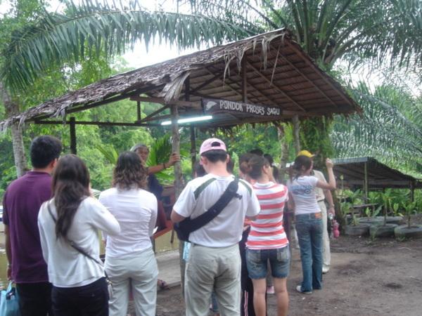 一群人在聽導遊介紹恐怖的蟲