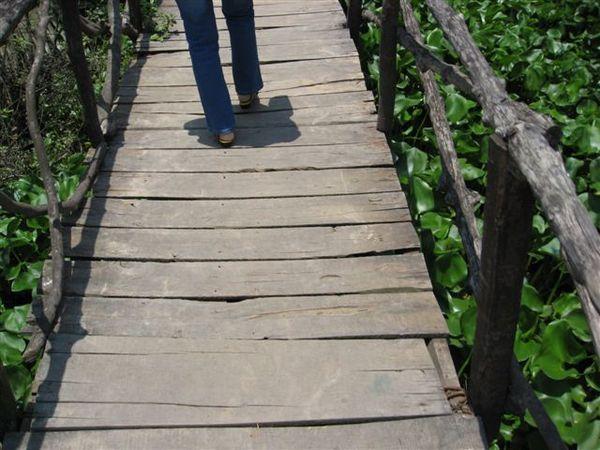 這個小橋太恐怖了吧