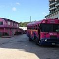 粉紅色的巴士+粉紅色的房子