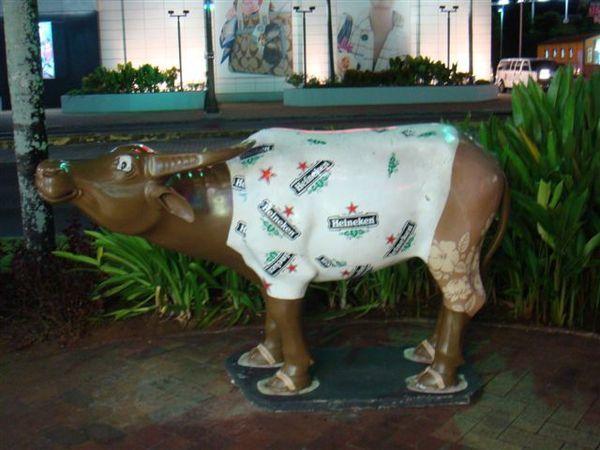 穿海尼根衣服的彩繪牛