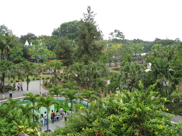 綠油油的公園