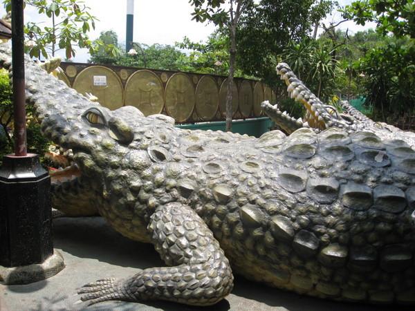 好像真的鱷魚