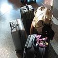 大家的行李