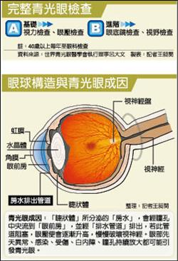 02-眼球構造與青光眼成因.jpg