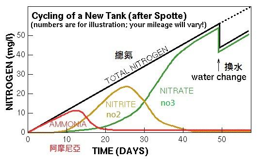 n-cycle1