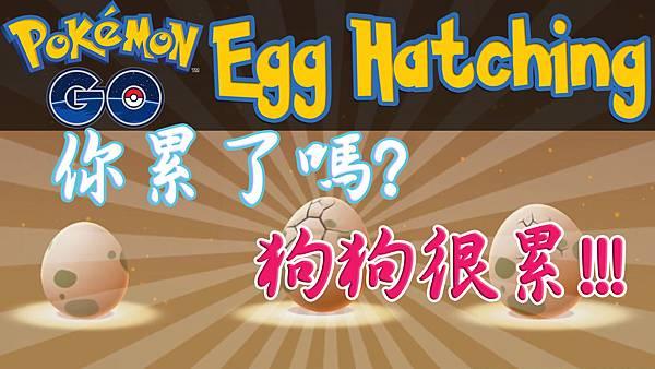 特殊孵蛋法-第6集.jpg