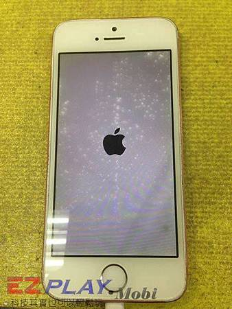 iPhone 5s喝酒歡慶新年?