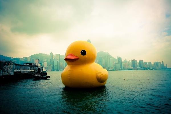 因為是黃色小鴨