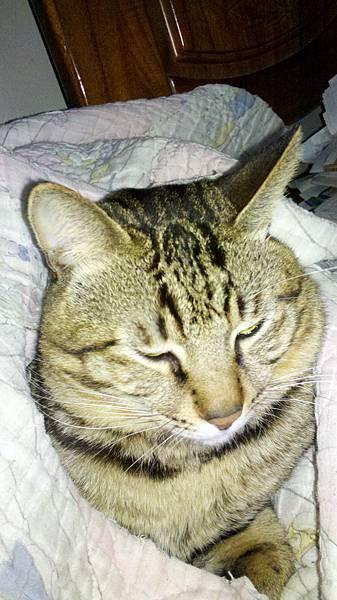 2012-03-01_19-43-36_929.jpg