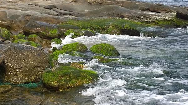 105.03新北-象鼻岩