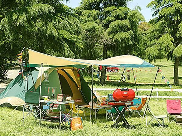 D2-露營帳篷