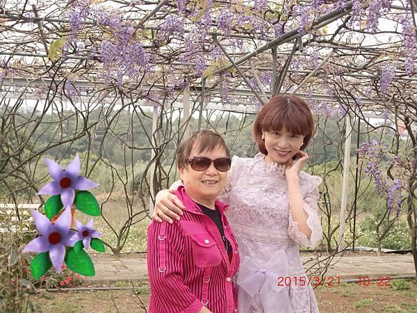 紫藤花咖啡園 046