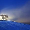冬 5.jpg