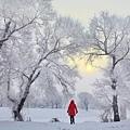 冬 11.jpg