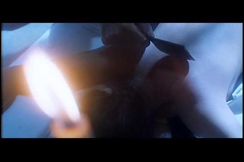 新人皮燈籠2.jpg