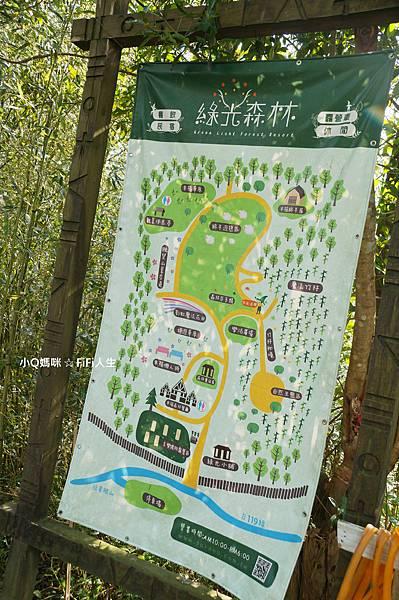 綠光森林3.jpg
