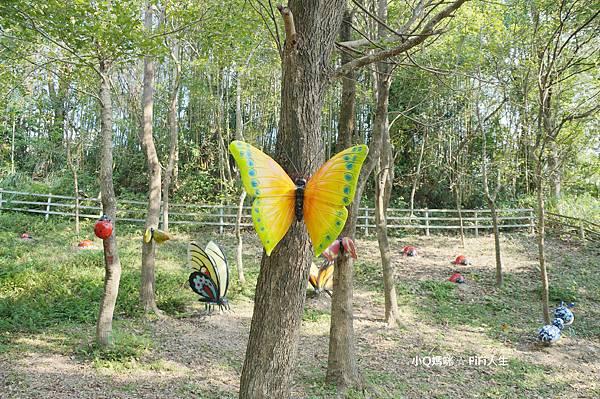 綠光森林5.jpg