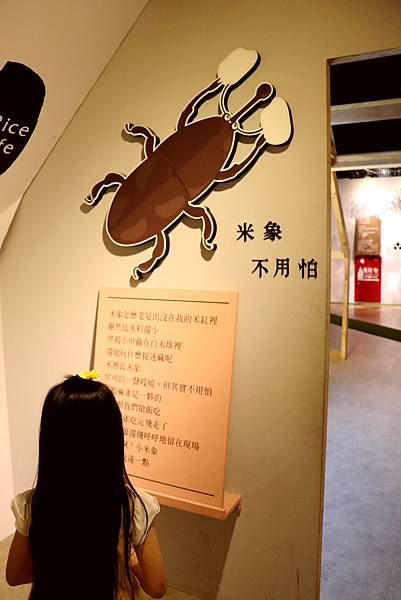 台灣穀堡20.jpg