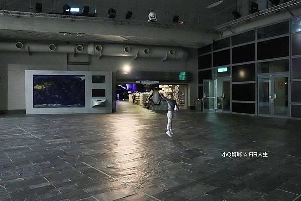 夜宿海生館59.jpg