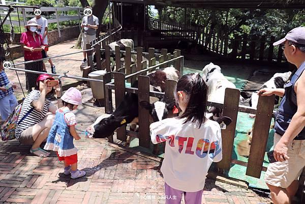 新竹牧場15.jpg