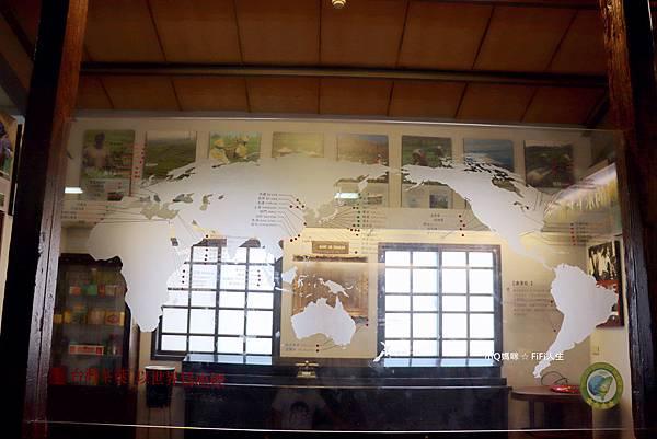 關西茶廠18.jpg