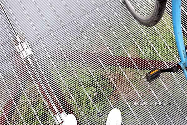 嘉義自行車道8.jpg